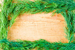 Free A Dill Frame Royalty Free Stock Images - 4024739