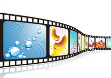 Free A Film Strip With Nice Pictures Royalty Free Stock Photography - 35291397