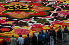 Free A Flower Carpet In Brussels, Belgium Royalty Free Stock Image - 89191976
