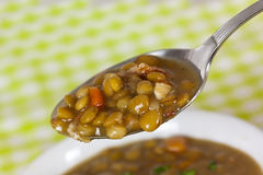 A Fresh Spoonful Of Lentil Stew Stock Photography