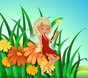 Free A Garden At The Hilltop With A Fairy Stock Image - 33072641