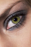 A Green Eye Stock Images