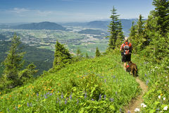 A Hiker And His Best Friend Stock Image