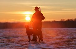 Free A Hunter In A Hat With A Gun And A German Shorthair Pointer Dog Breed Stands On A Meadow Covered With Snow. Majestic Winter. Stock Images - 149059664