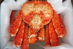 Free A King Crab Stock Images - 37440214