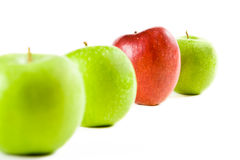 A Line Of Fresh Apples Royalty Free Stock Photography