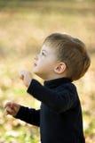 A Little Boy Royalty Free Stock Photos
