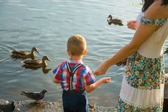 Free A Little Boy And His Mom Feed Birds On The Lake Royalty Free Stock Photos - 122643728