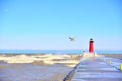 Free A Lone Sea Gull Checks Out The Large Lake Michigan Waves Stock Photography - 182365452
