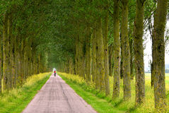 A Long Way To Go Stock Photography