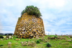 Free A Nuraghe, The Main Type Of Ancient Edifice In Sardinia, Italy Stock Photography - 83693882