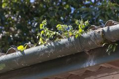 Free A Old Gutter Stock Photography - 138004352