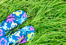 A Pair Of Colorful Flip Flops With Flower Pattern Lying Down On Green Spring Grass Lawn. Stock Images
