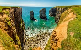 Free A Panorama View Of Stack Rocks On The Pembrokeshire Coast, Wales Near Castlemartin Royalty Free Stock Image - 194751556