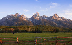 Free A Pastoral Scene At The Base Of The Tetons Royalty Free Stock Images - 14402929