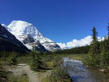 Free A Path Leading To The Beautiful Mount Robson Glacier Along The Berg Lake Trail Royalty Free Stock Images - 134414839