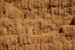 Free A Pile Of Hay Stack. Royalty Free Stock Images - 29586849