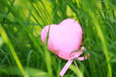 Free A Pink Love Shaped Foam Toy Gift Lying On Green Grass Lawn In Summer Spring Autumn, Close Up Stock Image - 119876521