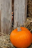 A Pumpkin In Front Of A Barn Royalty Free Stock Photo