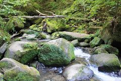 Free A River In The Little Switzerland Of Luxembourg, Mullerthal Stock Photography - 158563702