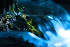 Free A Running Creek Royalty Free Stock Image - 934756