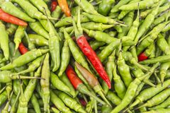 Free A Set Of Fresh Mixed Red And Green Hot And Spicy Bird-chilli Close Up With Fine Detail Stock Photography - 167118042
