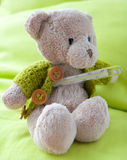 A Sick Bear Royalty Free Stock Photography