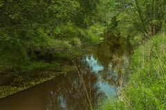 A Small, Unregulated River. Stock Photos