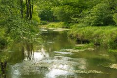 A Small, Unregulated River. Stock Photo