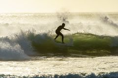 A Surfer Surfing At Betty`s Bay Beach At Sunset In The Western Cape, South Africa Stock Photos