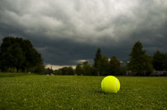 A Tennis Ball On The Lawn Stock Photography