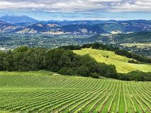 Free A View Over The Hills And Vineyards Of Sonoma County, California Stock Photography - 123344002