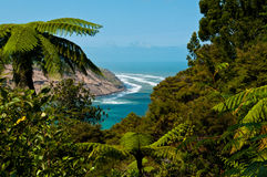 A View To Manukau Heads From Waitakere Regional Park Royalty Free Stock Photo