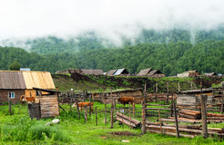 Free A Village In Xinjiang Royalty Free Stock Photography - 81984417