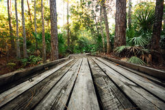 A Wooden Walkway Stock Image