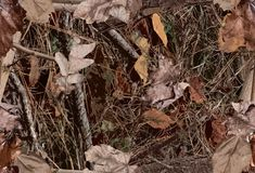 Free A Woodland Camouflage Pattern For Hunting Purposes Royalty Free Stock Photography - 138937787