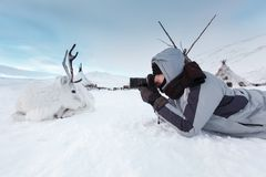 Free A Young Photographer Shoots A White And Cute Deer Lying On The Snow. Very Cold. Russia, Siberia, Yamal. Stock Photos - 104260783