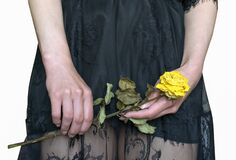 Free A Young Woman Holds A Yellow Withered Rose In Her Hand Stock Images - 182731154