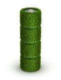 从草的AA电池与细胞 免版税库存图片