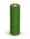 AA bateria od trawy Obrazy Stock