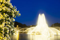 Aachen Europaplatz Fountain At Night. The famous Europaplatz fountain in Aachen, Germany at night with focus on a bush of beautiful flowers in the foreground Stock Photo