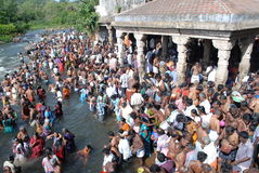 Aadi amaavaasai festival papanasam tamilnadu india. 26 jul 2014 tamilnadu INDIA. people are gathered to take holy bath in tamirabarani river at papanasam which royalty free stock photo