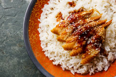 Aal auf Reis Lizenzfreie Stockfotos