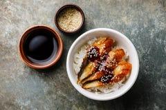 Aal auf Reis Stockfotos