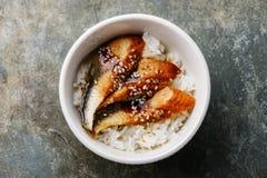 Aal auf Reis Lizenzfreies Stockbild