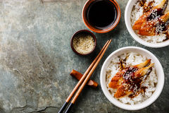 Aal auf Reis auf Steinhintergrund Lizenzfreie Stockfotos