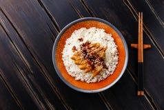 Aal auf Reis mit Soße und indischem Sesam Stockfotografie