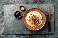 Aal auf Reis mit Soße und indischem Sesam Lizenzfreie Stockfotografie