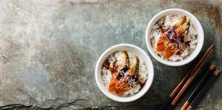 Aal auf Reis mit Soße und indischem Sesam Lizenzfreies Stockbild