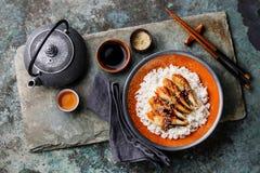 Aal auf Reis mit Soße und indischer Sesam und grüner Tee Lizenzfreie Stockbilder